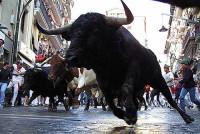 Fiesta San Fermin in Pamplona