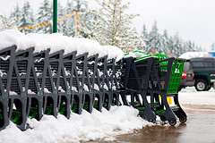 Shopping carts im Winter