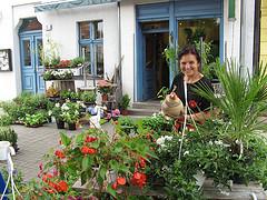Blumen in Rahnsdorf