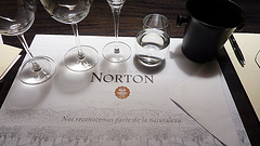 Tasting bei Norton / Mendoza