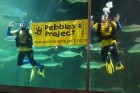 Pebbels Party 2012 in the Two Oceans Aquarium Capetown